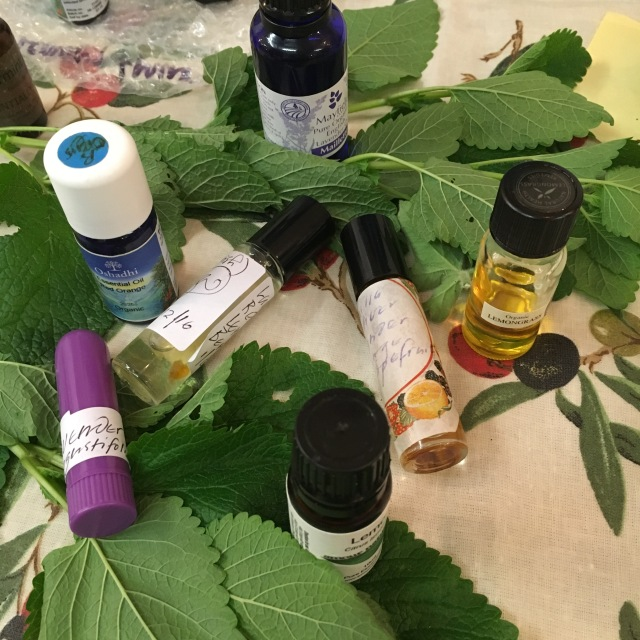 Essential oils and scented plant leaves